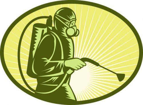 شركة مكافحة حشرات الاحساء
